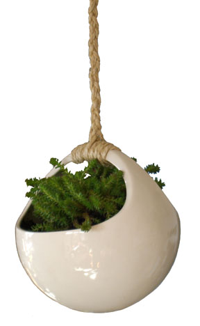 The Perch Plant Orb ($116) is a thoroughly modern way to present a hanging houseplant.