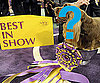 Best of Westminster 2009