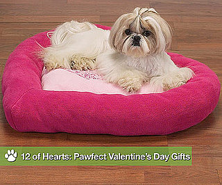 12 of Hearts: Pawfect Valentine's Day Gifts
