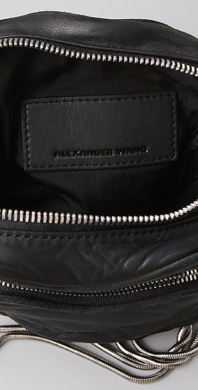 Photos of Alexander Wang Mini Camera Bag