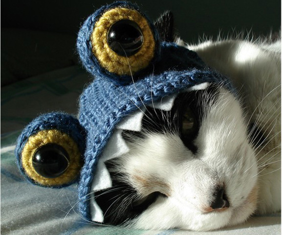 Covetable Hats For Cats (and Dogs, Too)