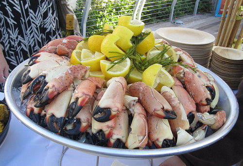 Have You Ever Eaten Stone Crab?