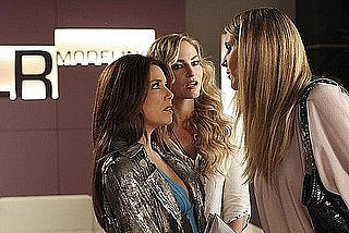 "Recap and Review of Desperate Housewives Episode ""Chromolume #7"""