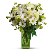 St. Patty's Day Flowers