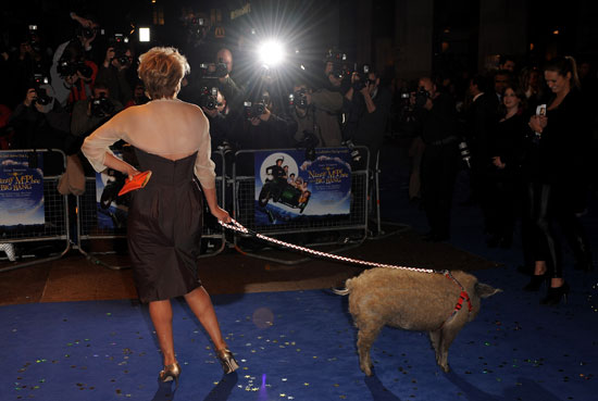 There's a Pig on the Red Carpet