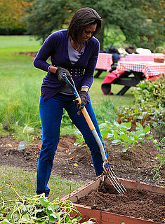 Video: White House Garden Expanding This Spring