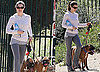Photos of Jessica Biel Walking Dogs and Justin Timberlake New Movie Role Friends With Benefits