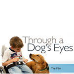 Through a Dog's Eyes Documentary on PBS