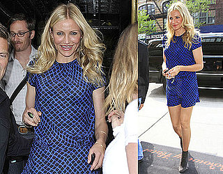 Pictures of Cameron Diaz Meeting Mike Meyers for Lunch in NYC