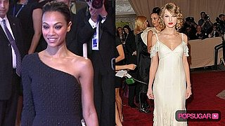 Best Red Carpet Looks From the 2010 Costume Institute Gala