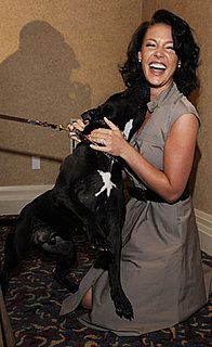 Pictures of Katherine Heigl and Her Dog, Apollo