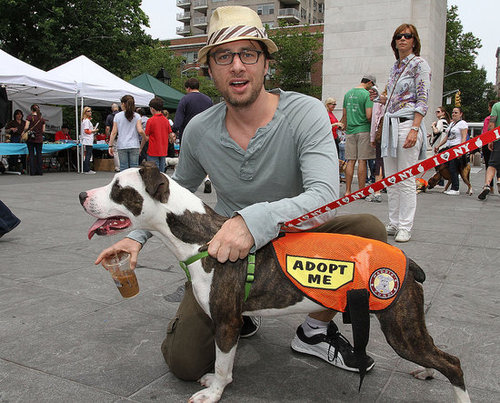 Pictures of Zach Braff at Adoptapalooza in NYC