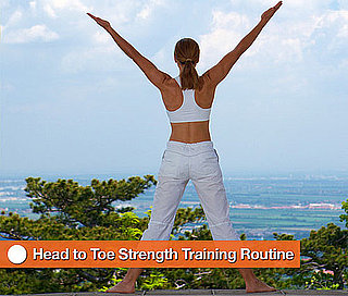 Total Body Strength Training Routine 2010-05-19 05:50:17