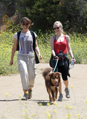 Pictures of Amanda Seyfried Hiking in Griffith Park With Her Dog