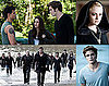 Quiz on Stephenie Meyer's The Twilight Saga: Eclipse