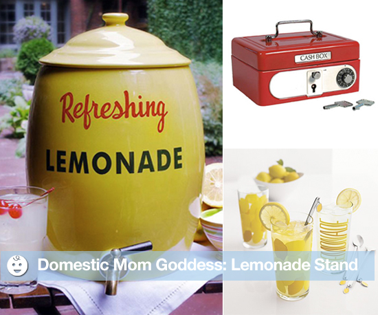 Items For a Lemonade Stand