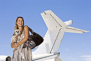 How to Fly With Pets