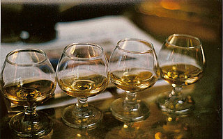Scotch Whisky Fun Facts and Trivia