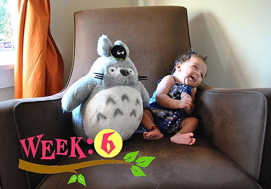 Olivia Lily 6 Weeks Old!!