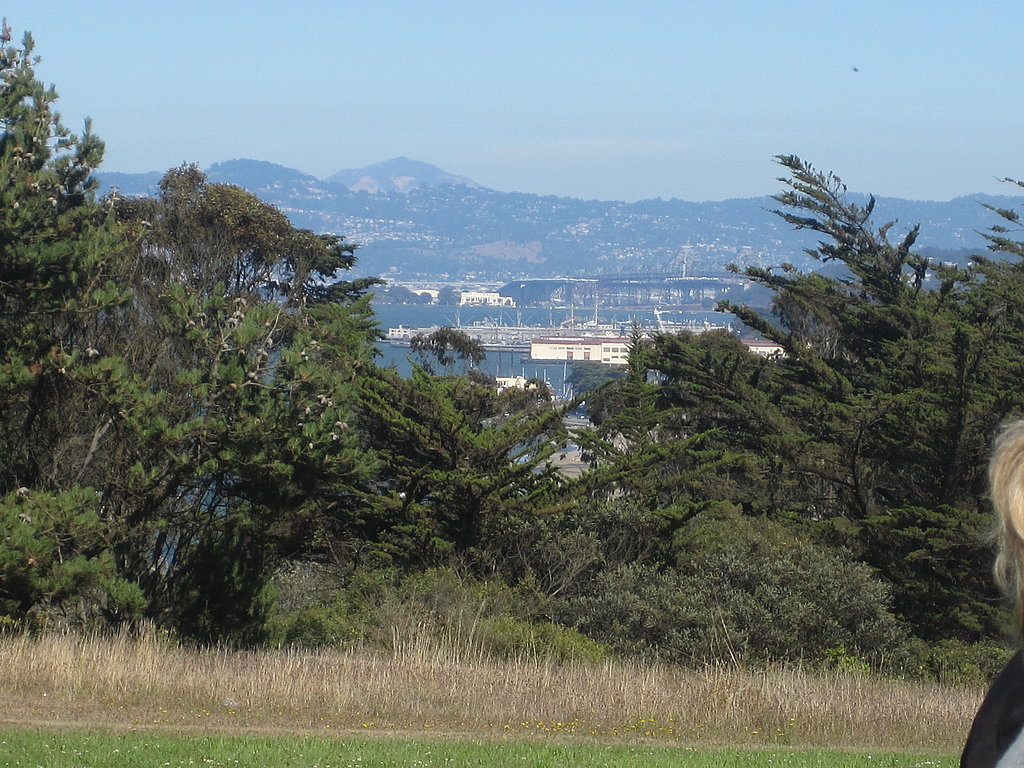 The view from the grass was of the San Francisco bay.