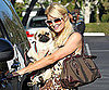 Slide Picture of Paris Hilton and Pug