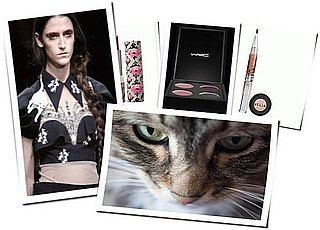 Cat Beauty Trend