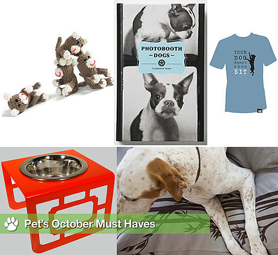Shopping Ideas For Pets
