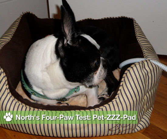 North's Four-Paw Test: Pet-ZZZ-Pad