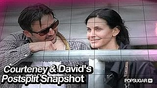Courteney Cox and David Arquette Together During Their Separation 2010-10-20 12:19:59