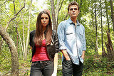 Stefan and Elena, <b>The Vampire Diaries</b>