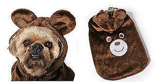 Dog Halloween Costumes For Any Day