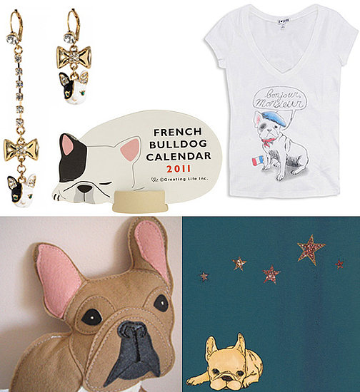 Pet Lover Presents: I Can't Get Enough French Bulldogs!