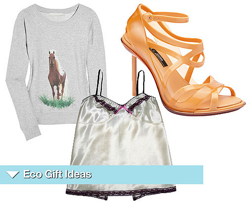 Christmas Present Ideas for an Eco Girl for 2010