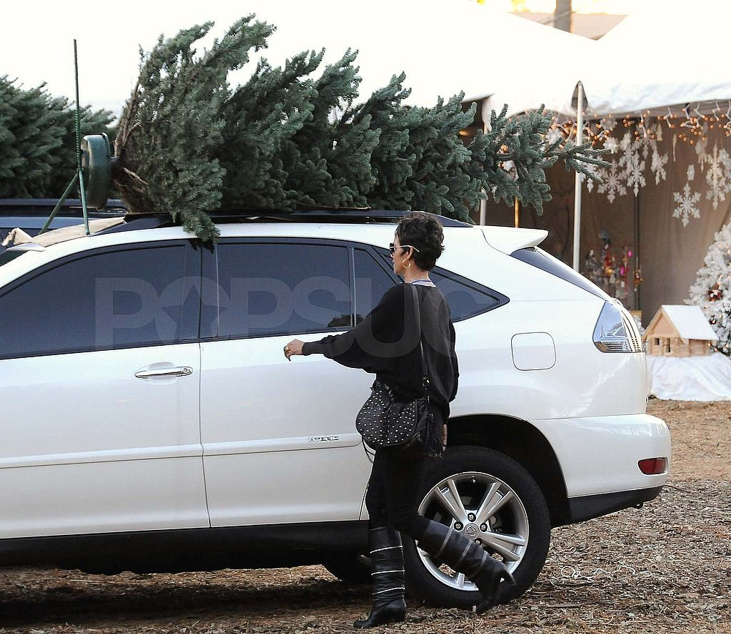 Pictures of Halle Berry Tree Shopping