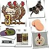 Beauty Gift Ideas From the 12 Days of Christmas 2010-12-15 06:00:57