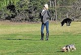 January Jones Enjoys Her Dog Days and Daring X-Men Costumes