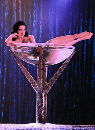 Dita Von Teese's Cleavage Is Too Sexy For CSI