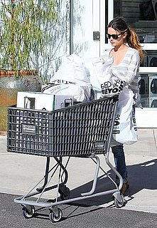 Pictures of Rachel Bilson Shopping at Bed, Bath & Beyond in LA