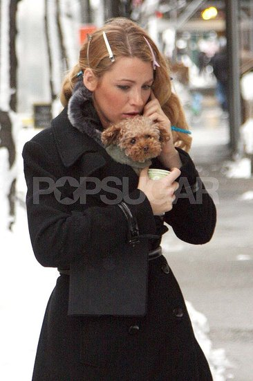 Blake Lively had her dog Penny366