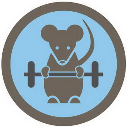 Show Off Your Fitness Fanatic Status: 5 Healthy Foursquare Check-Ins