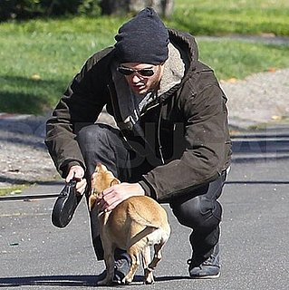 Pictures of Kellan Lutz Walking His Dogs in LA