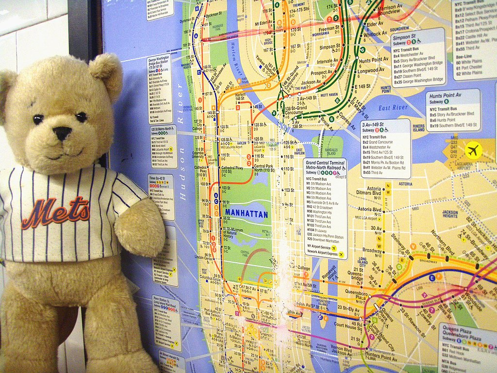 Stuffed in the City Gives Loveys a Big Town Adventure
