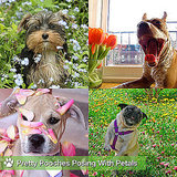 Pictures of Cute Dogs With Flowers