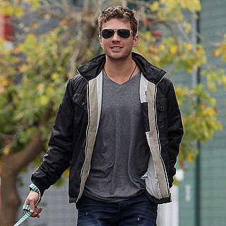 Pictures of Ryan Phillippe and Amanda Seyfried Walking Their Dogs in LA