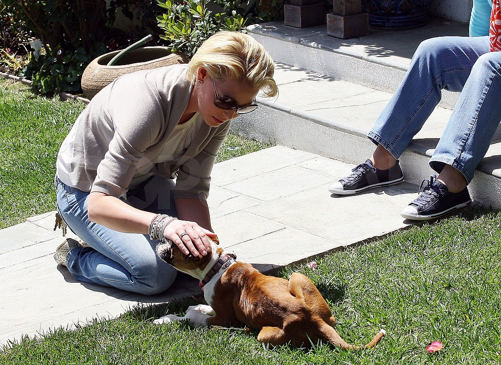 Katherine Heigl Has Love For Dogs, Her Mom, and a Return to TV