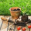 Gardening Apps, Easter DIYs
