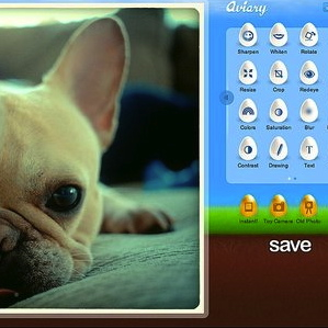 Free Online Photo Editor Aviary