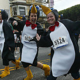 San Francisco Bay to Breakers, Taste of Portero, Bike to Work Day, and More
