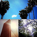 Twitter Pics of Los Angeles