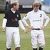 Prince William and Harry Pictures at the Sentebale Cup Polo Match
